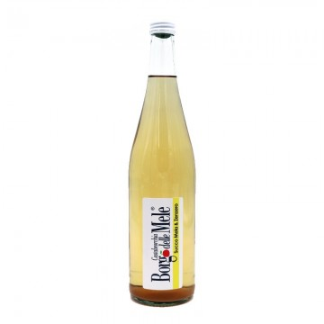 Apple and ginger juice 0,75lt